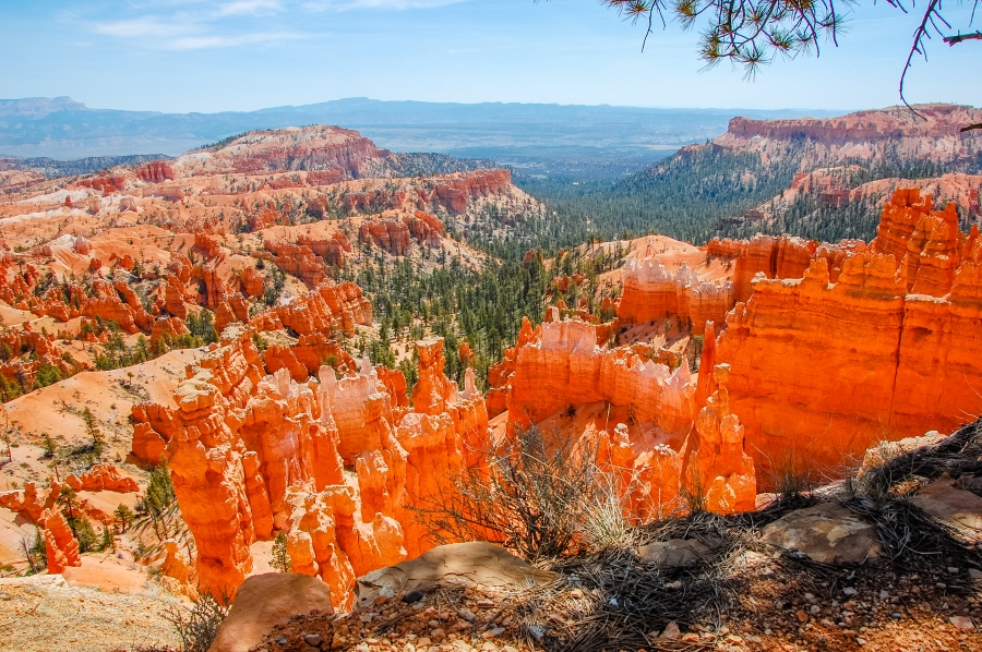 Bryce Canyon NP • © Hobbit Hill Photography