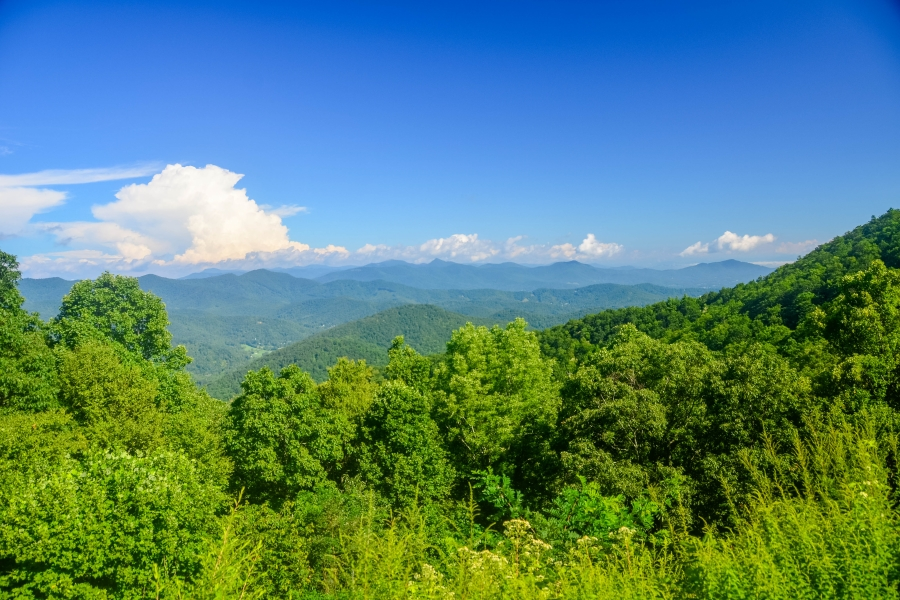 Great Smoky Mountains NP • © Hobbit Hill Photography