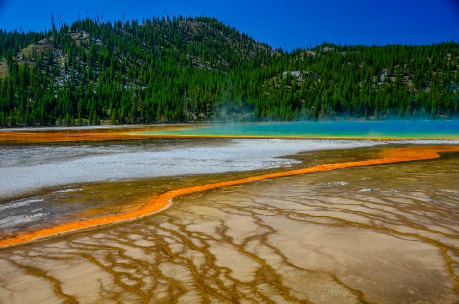 Yellowstone NP • © Hobbit Hill Photography
