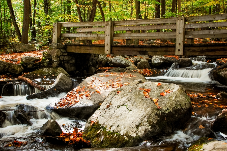 Hacklebarney State Park, Chester, NJ • © Hobbit Hill Photography